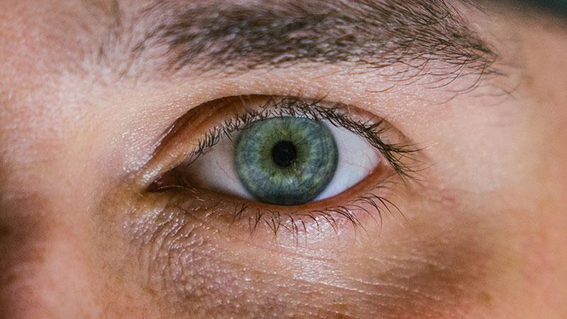 diabetes de fondo de ojo hta